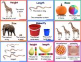 Non-Standard Measurement Posters