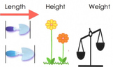 Measurement Video and Song (Basic Introduction to Length, Height and Weight)