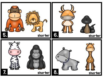 Measurement - Which animal is shorter?