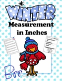 Measurement in Inches Winter