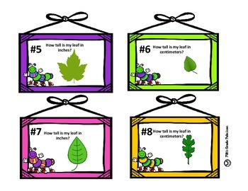 Measurement in Inches and Centimeters Task Card Set
