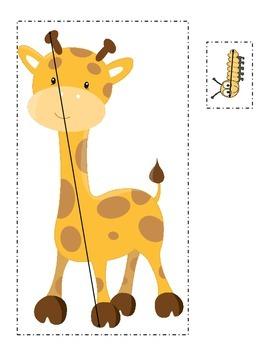 Measuring Animals