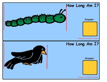 Measuring Animals: How Long Am I?
