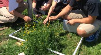 Measuring Biodiversity using Quadrats 5E Lab
