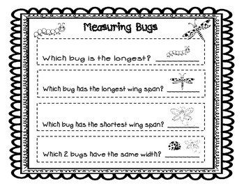 Measuring  Bugs / Insects
