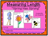 Measuring Length-Spring Has Sprung