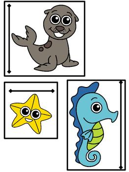 Measuring Ocean Animals | VA Math SOL 3.9