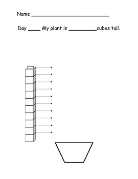 Measuring Plant with cubes-Things That Grow Unit 6