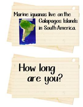Measuring & Research Station: Marine Iguana