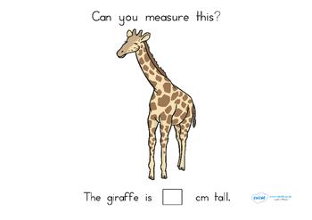 Measuring in cm Worksheets - Australia