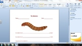 Measuring my Mealworms