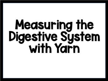 Measuring the Digestive System