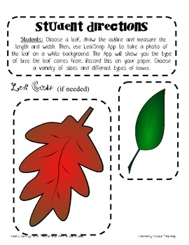 Measuring with Leaves
