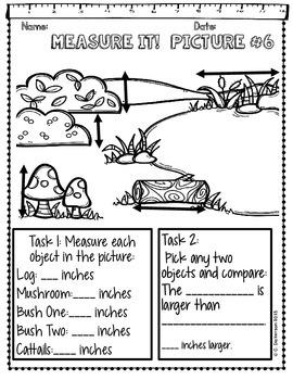 Measurement Activity