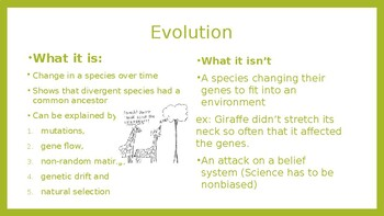 Mechanisms of Evolution: Genetic drift, Mutations, et al.