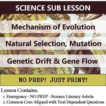 genetics evolution worksheet high school activities genetics best free printable worksheets. Black Bedroom Furniture Sets. Home Design Ideas