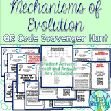 Mechanisms of Evolution QR Code Scavenger Hunt