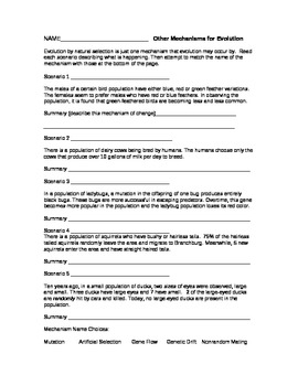 mechanisms of evolution worksheet - Evolution Worksheet
