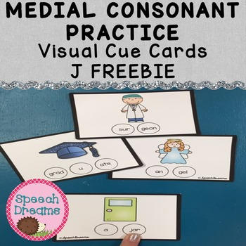 Medial Consonant Deletion Practice J {Phonology Flash Cards Visual Prompt} free