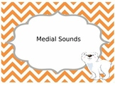 Medial Sounds Clip Card