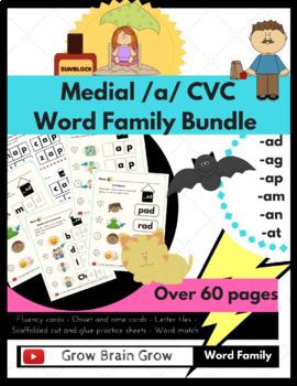 Medial /a/ CVC Word Families Kit (-ad, -ag, -am, -an, -ap,