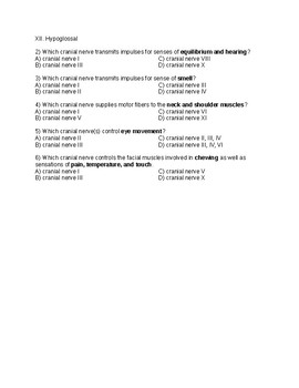 Medical Abbreviation Quizzes Set