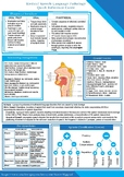Medical SLP Quick Reference Guide