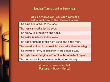 Medical Terminology - Anatomic Terms (Advanced): Part 1 - Pre-med