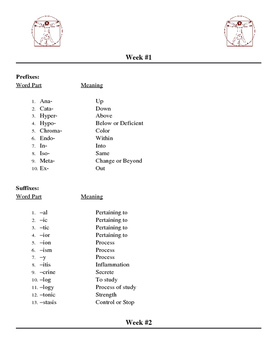 Medical Terminology Course Long Curriculum