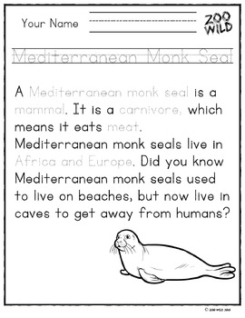 Mediterranean Monk Seal -- 10 Resources -- Coloring Pages, Reading & Activities