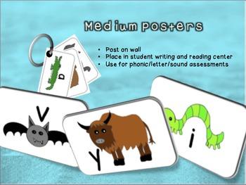 Medium Animal Alphabet Poster