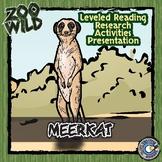 Meerkat - 15 Zoo Wild Resources - Leveled Reading, Slides & Activities