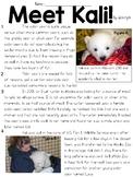 Meet Kali! Article Text and Question Set - FSA/PARCC-Style ELA Assessment