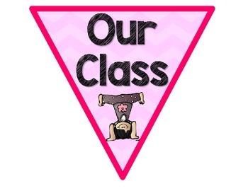 Meet Our Class Pennants