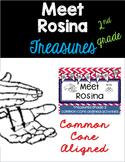 Meet Rosina: Treasures 2nd Grade: Common Core Aligned