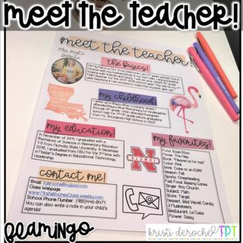 Meet The Teacher Newsletter- EDITABLE - Flamingo