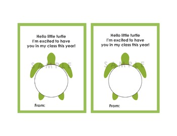 Meet The Teacher Turtle Playdoh Gift