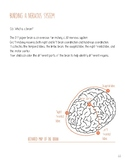 Meet Your Brain- Chapter 3: Building a nervous system