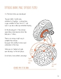 Meet Your Brain - Chapter 4: Different brains make differe