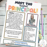 Meet the Assistant Principal Newsletter EDITABLE  Bright Stripes