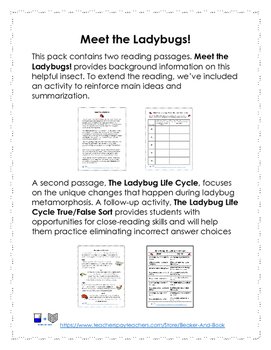 Meet the Ladybugs! Life Cycle Activity Pack