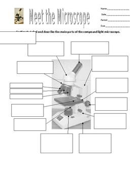 Meet the Microscope