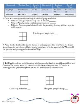 Meet the Stouds! Genetics Practice Worksheet