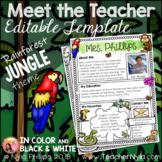 Meet the Teacher Letter - Editable Template - Tropical Rainforest Jungle Theme