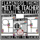 Flamingo Welcome Back to School Letters Editable: Meet The Teacher Template