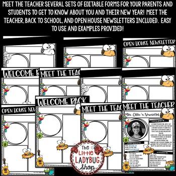 Fiesta Theme Meet The Teacher Template Editable & Meet the Teacher Letter