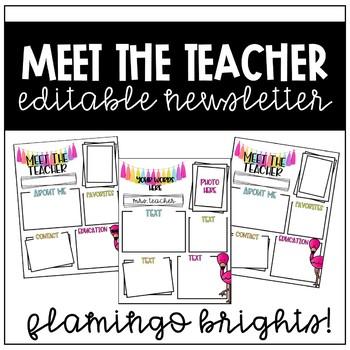 Meet the Teacher Newsletter (Flamingo Brights)