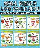 Life Cycle Mega Bundle Set 1 {Zip-A-Dee-Doo-Dah Designs}