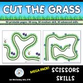 Scissors Skills Fine Motor