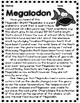 Megalodon Informational Reading and Text Based Questions